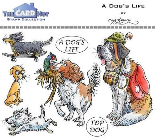 A Dogs Life a6 clear stamp set from Card Hut