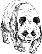 Crafty Stamps - Giant Panda large - AN122M