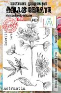 Astrantia No. 452 Tracy Evans Aall and Create A5 Stamp Set