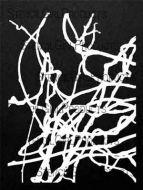 Bare Wisteria 9 inch by 12 inch Stencil (L553) by Trish McKinney for StencilGirl