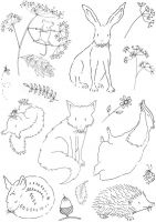 CS255D Hobby Art Stamps - British Wildlife