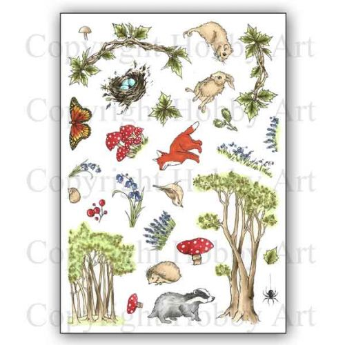 CS157D Bluebell Wood Hobby Art Stamps