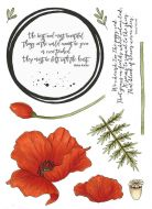 CS182D Hobby Art Stamps - The Poppy Red