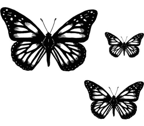 Crafty Stamps - Butterfly Set 2 - AN145K