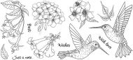 CS226D Hobby Art Stamps - Janies Collection - Hummingbirds