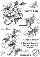 CS207D Hobby Art Stamps - Jeans Flowers