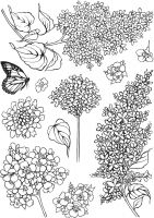 Lilac A5 Clear Stamp Stamp Set by Hobby Art (CS311D)