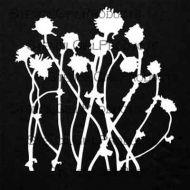 Mikki's Flowers Mask 6 inch by 6 inch Stencil (S605) by Cecilia Swatton for StencilGirl