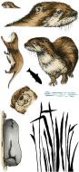 Otters DL Clear Stamp Stamp Set by Hobby Art (CS296D)