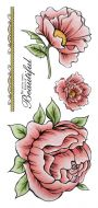 Peonies Colour DL Hobby Art Stamp Set (CS125D)
