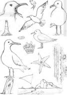Seagulls A5 Clear Stamp Stamp Set by Hobby Art (CS277D)