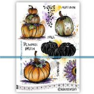 Pumpkin Fields (KTZ278) A5 Unmounted Rubber Stamp Set by Katzelkraft